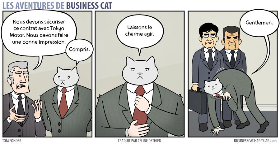 business-cat-6