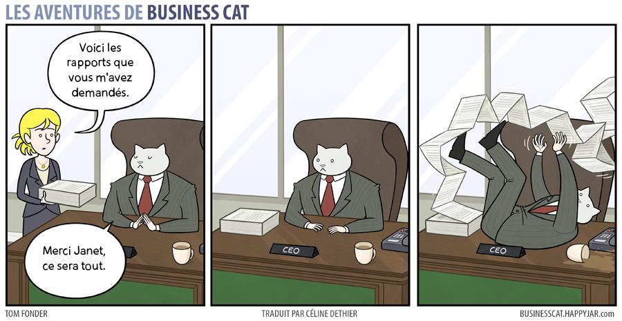 business-cat-8