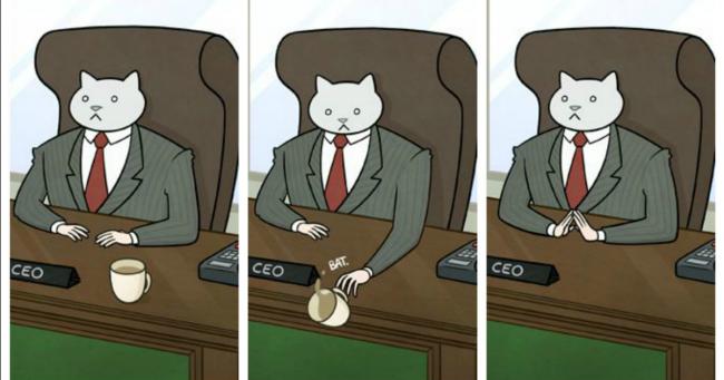 Top 14 des petits désagréments au boulot si votre patron était un chat