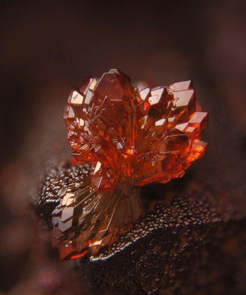 cristal-1