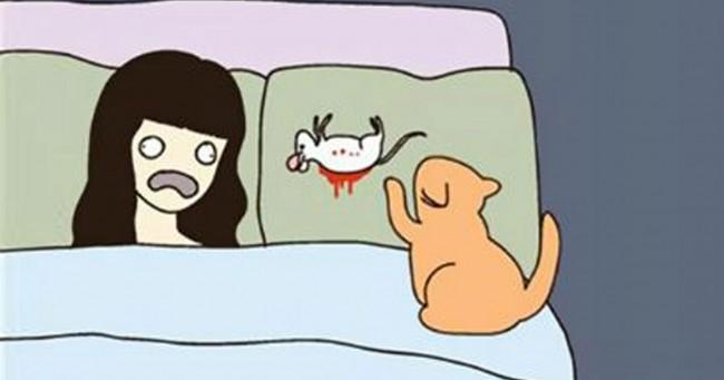 Top 10 des illustrations qui parleront aux propriétaires de chats, «oh une souris crevée, merci, fallait pas !»