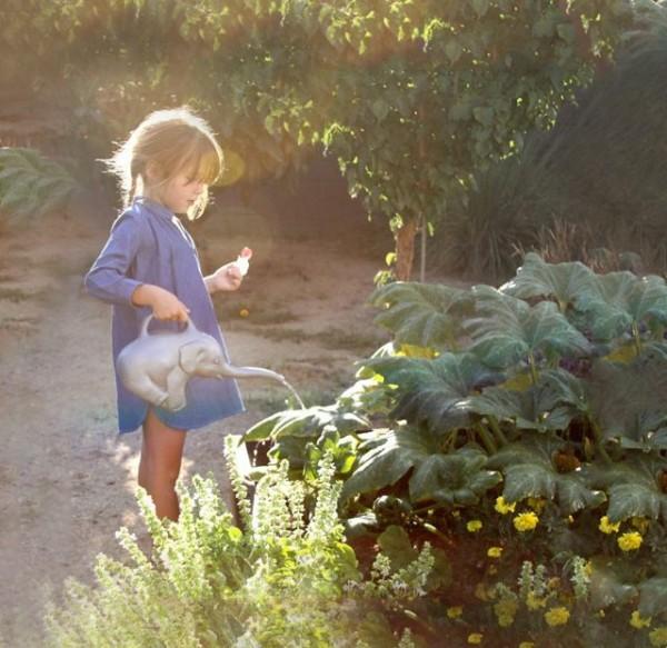 Un petit l phant qui arrose et fait fleurir votre jardin for Fleurir son jardin
