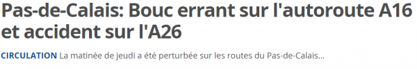 Pas de Calais  Bouc errant sur l autoroute A16 et accident sur l A26