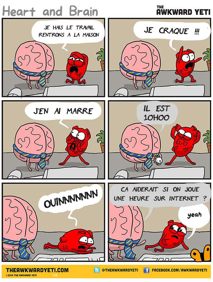 coeur-cerveau-illustration-2