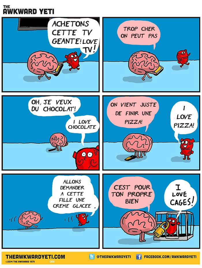 coeur-cerveau-illustration-7