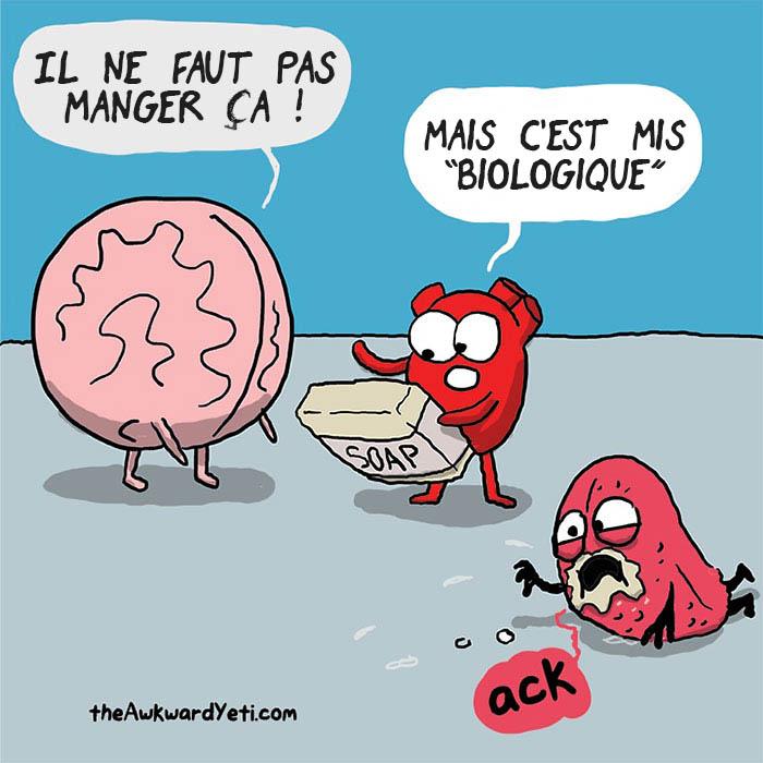 coeur-cerveau-illustration
