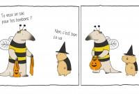 une-animaux-halloween