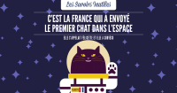 SAVOIRS_INUTILES_CHAT-04