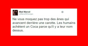 une_madmarcel