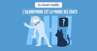 SAVOIRS_INUTILES_CHATS-04 (1)