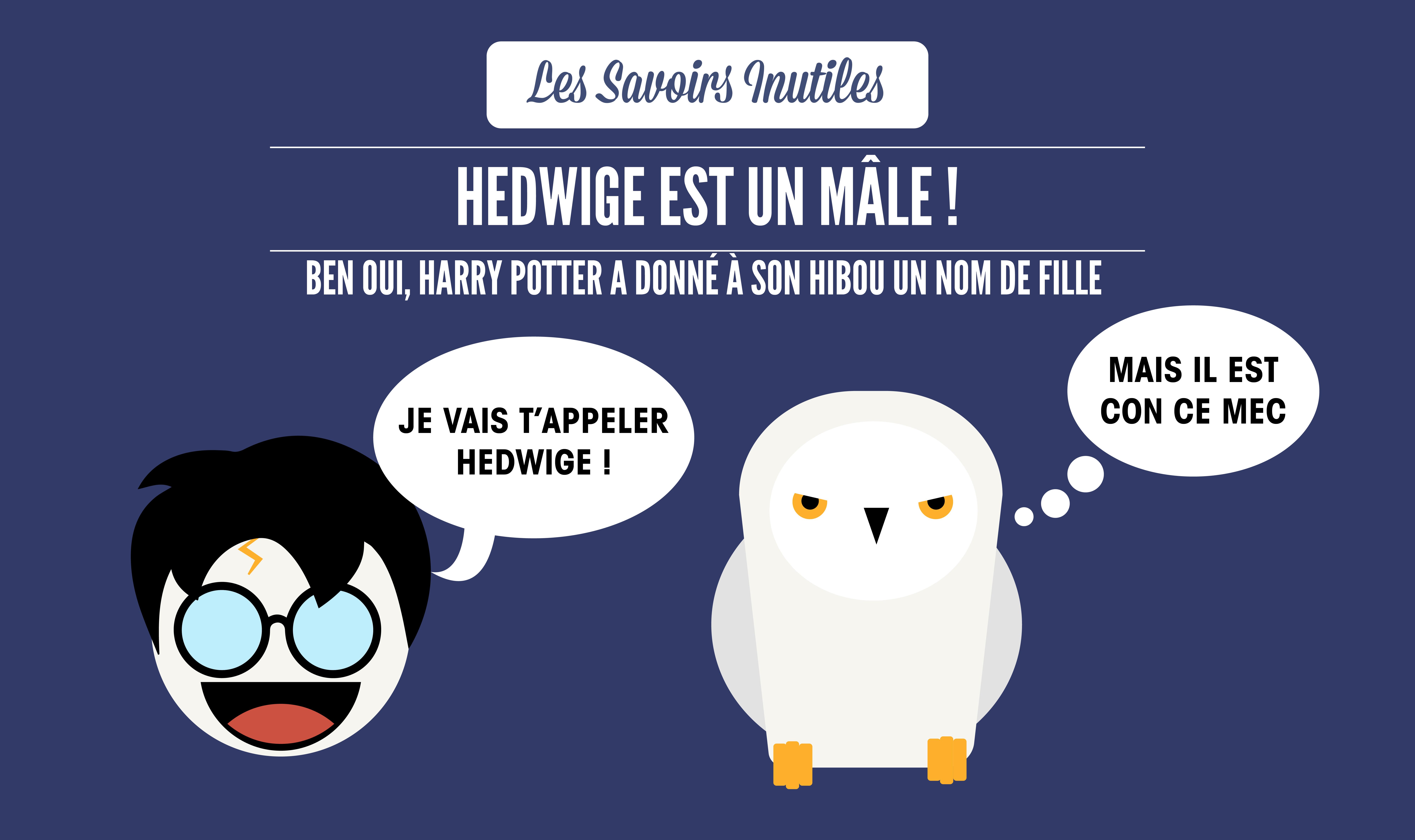 Top 12 Des Petits Savoirs Inutiles Sur Harry Potter Le