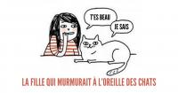une_comic