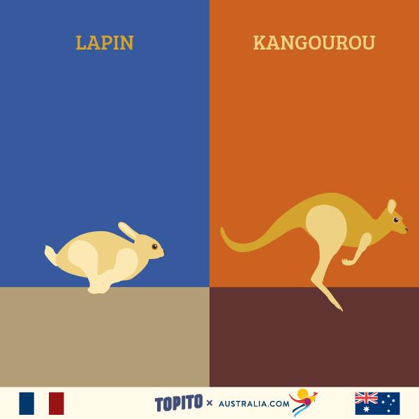 FRANCE VS AUSTRALIE-03