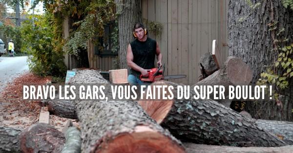 Wood_Cutter_(6236527192)