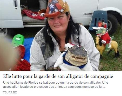 alligator_resultat