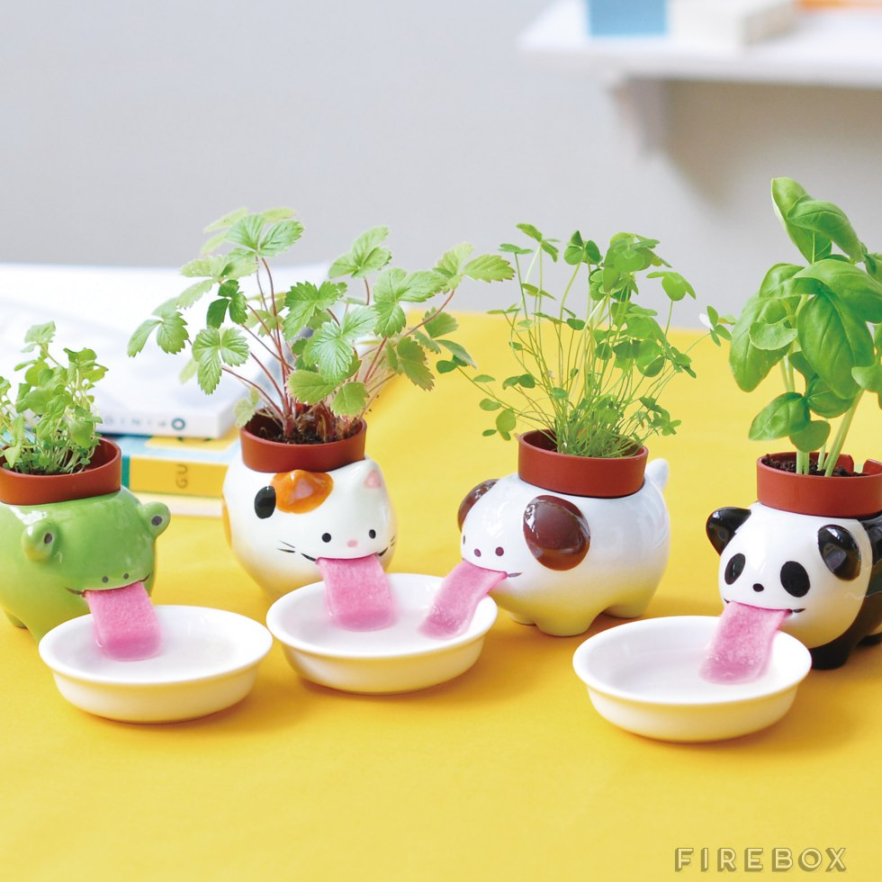 un petit pot fleur en forme d 39 animal qui boit de l 39 eau tellement kawa topito. Black Bedroom Furniture Sets. Home Design Ideas