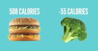 une_calorie_negatives
