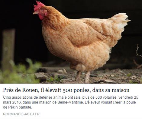 poules_resultat