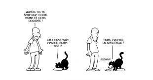 lapuss-une-chat-vie-secrete