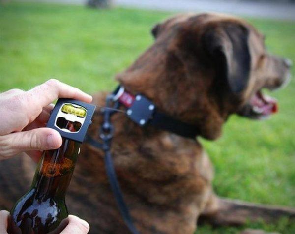 Bark-4-Beer-Dog-Collar-Bottle-Opener