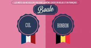 une_langue_belge_france