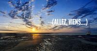 Bassin_d'Arcachon_au_soleil_levant (1)