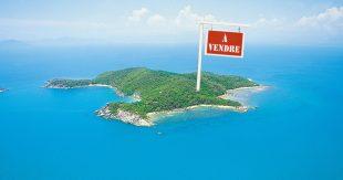 Bedarra_Island_aerial