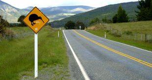 Kiwi_road_sign,_New_Zealand