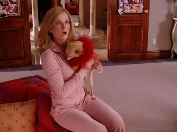amy-in-mean-girls-amy-poehler-7197493-640-480