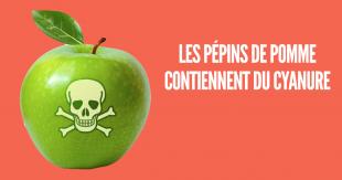 une_aliments_mort