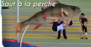 une_perhe