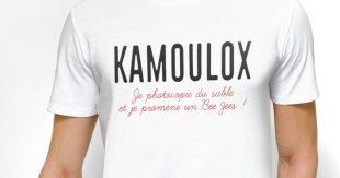 t-shirt-kamoulox