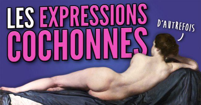 vignette_top_expressions_cochonnes_fb