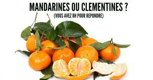 citrus-2395_960_720