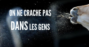 cracher