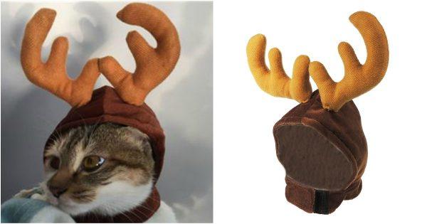 reindeercat