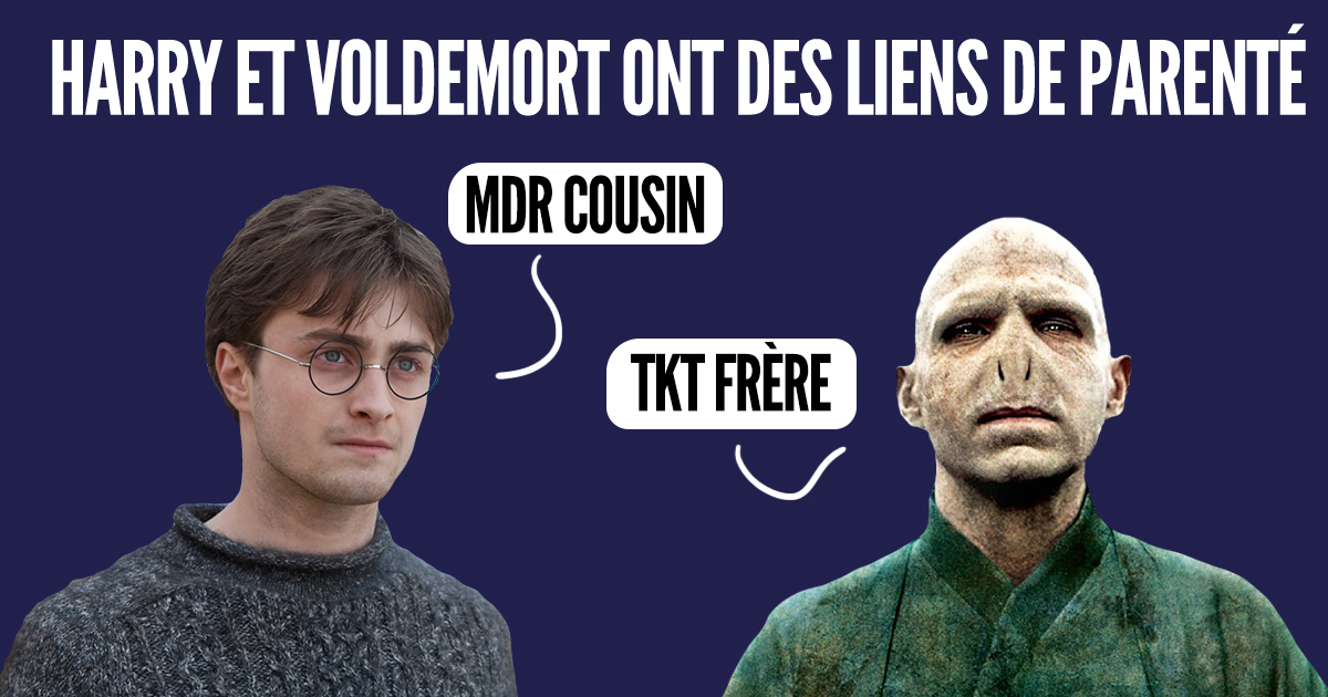 acteur gandalf et dumbledore