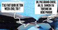 une_orques_2