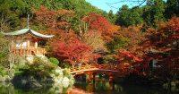800px-daigo-ji_in_autumn_kyoto
