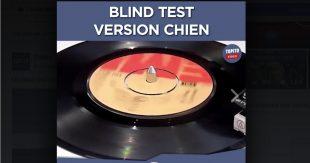 blind-test-chien