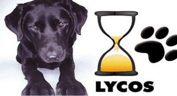 lycos-sur-le-retour-gagnant_577711