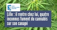 une_lille_cannabis