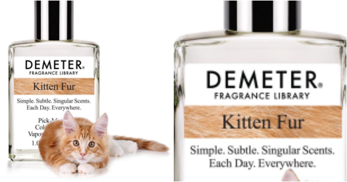 un parfum qui sent la fourrure de chaton topito. Black Bedroom Furniture Sets. Home Design Ideas