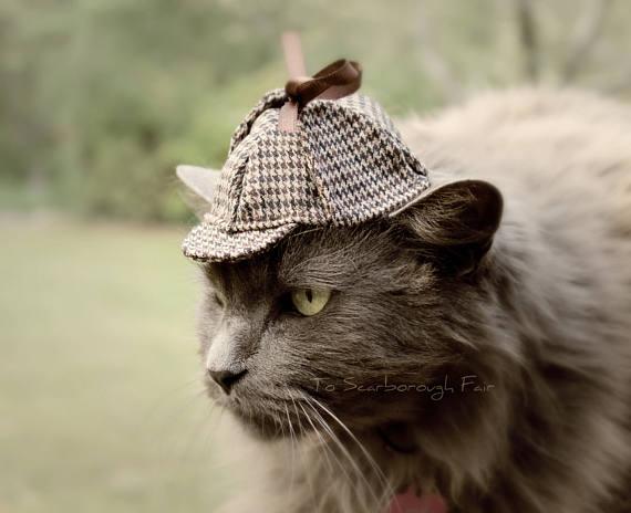 Un chapeau de Sherlock Holmes pour chat | Topito