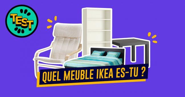 Quel meuble ikea es tu travail a domicile for Assemblage meuble ikea