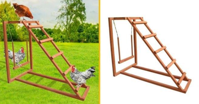 [TOPITRUC] Une aire de jeux pour poules, pour leur faire faire de l'exercice