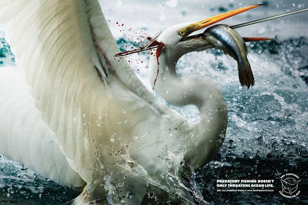 harpoon-egret