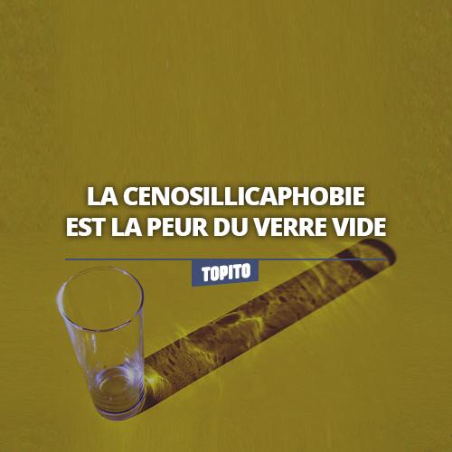 topitologue7