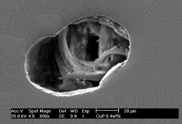 cuivre-phospore