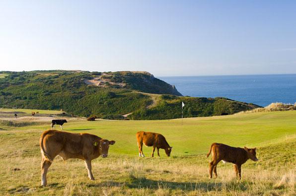 16th hole at Pennard Golf Club, Swansea, South Wales